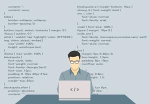 programmer wordpress code