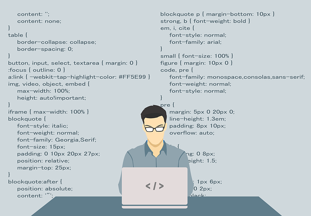 programmer wordpress code