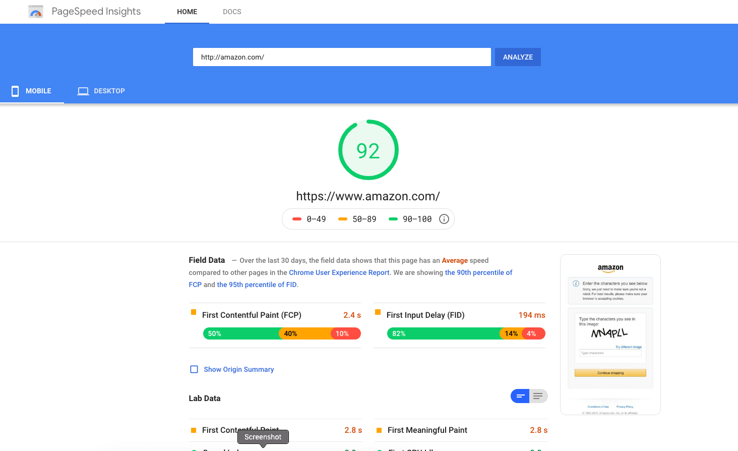 Google Pagespeed Insights Interface